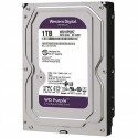 HD WD SATA3 1TB 3.5 PURPLE INTELLIPOWER WD10PURZ