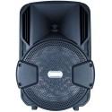 CASSA ACUSTICA 8 POLLICI PORTATILE BLUETOOTH/SD/USB/RADIO